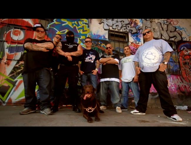 2010.07 - SPOT Dogo Gang_mod